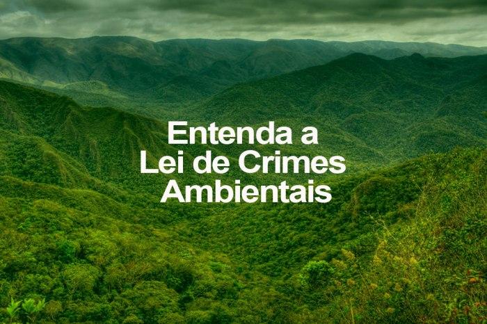 Entenda-a-Lei-de-Crimes-Ambientais